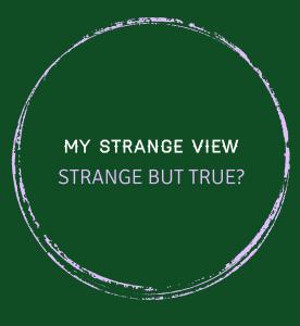 My Strange View